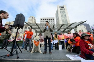 Photo:  Dr. Peter Li with Humane Society International addresses the supporters. Photo: Daniel McPartlan Photography