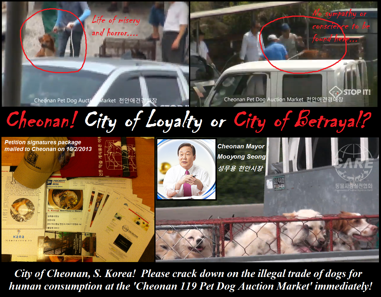 Please crack down on the illegal trade of dogs for human consumption at the