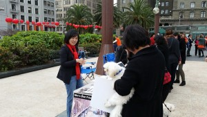 Our table.  Giny talking to a supporter with her furry baby.
