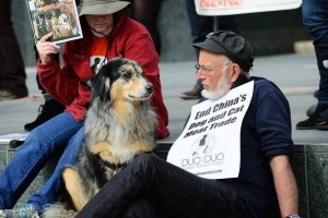 It was great to have dogs present at the rally to give their support and two paws up!  :O)  Photo:  Global March for Elephants and Rhinos