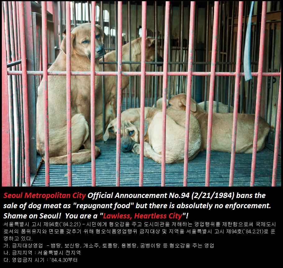 Kyeongdong Market Poster