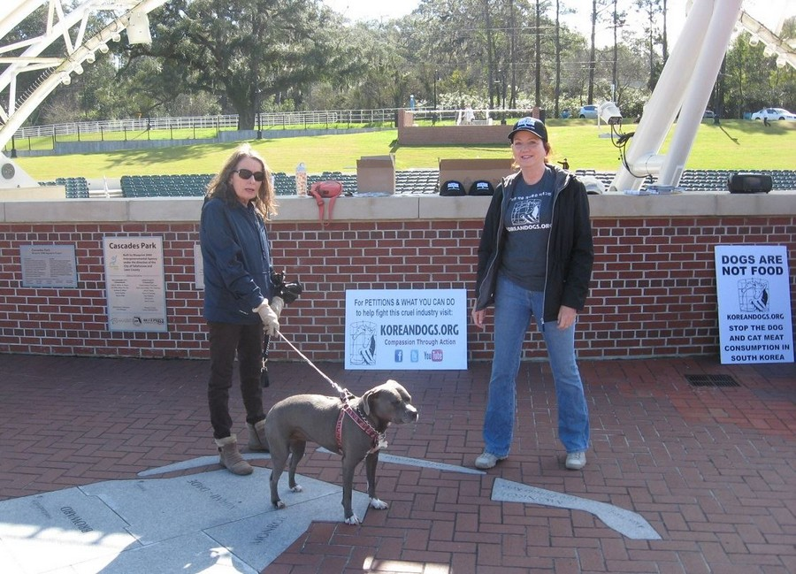 Our KoreanDogs.org advocates, Becky, Pippa, and Sally at Tallahassee's Cascades Park.