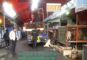 Busan Gupo Market.  Photo: Busan KAPCA.