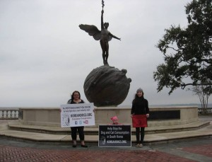 It was a cold, windy, rainy day. Thank you very much, Ashley, Madilyn, and Amanda, for joining the campaign to stop the torture and consumption of dogs and cats in the meat trade.