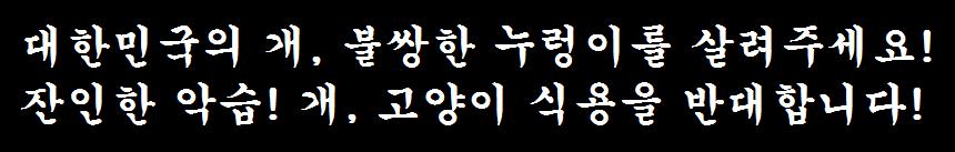 대한민국의 개, 불쌍한 누렁이를 살려주세요!