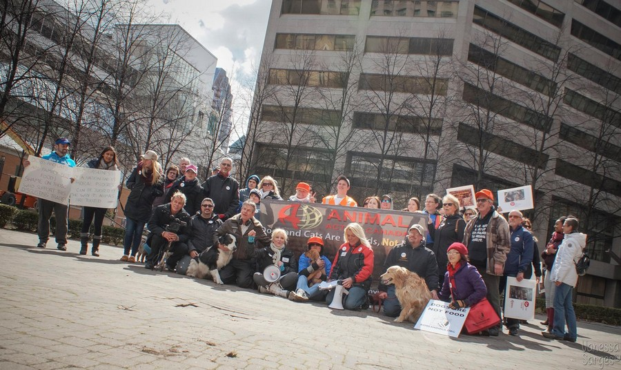 Thank you, Animal Action Canada for speaking out against the horrible cruelty of dog and cat meat trade!