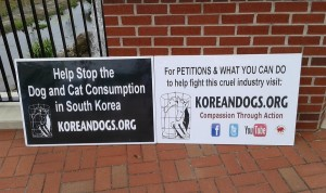 We had five signs promoting veganism in addition to these two KoreanDogs.org signs.
