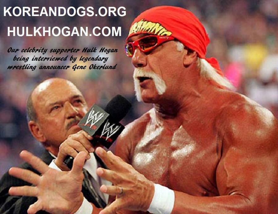 KD_Celebrity Supporter_Hulk Hogan