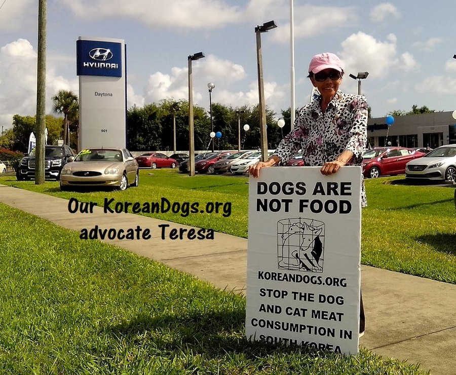 Teresa is new to animal advocacy. She is very compassionate. Way To Go, Teresa. Thanks a million.