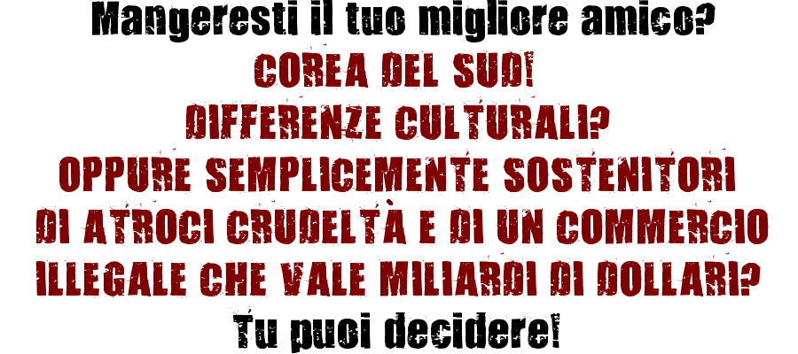 Italian-Homepage text with 321 Impact Font