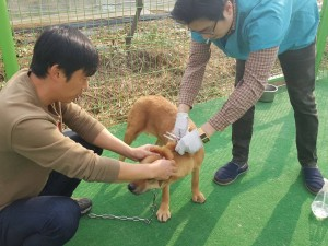 Dr. Jun visits for exam and vaccination_3