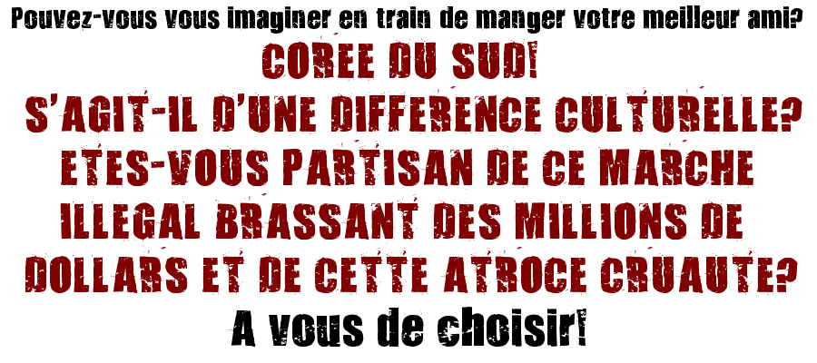 French-Homepage text with 321 Impact Font