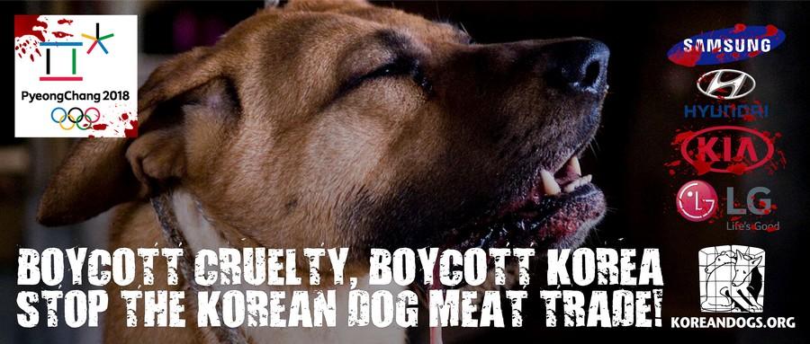 Boycott Cruelty, Boycott Korea