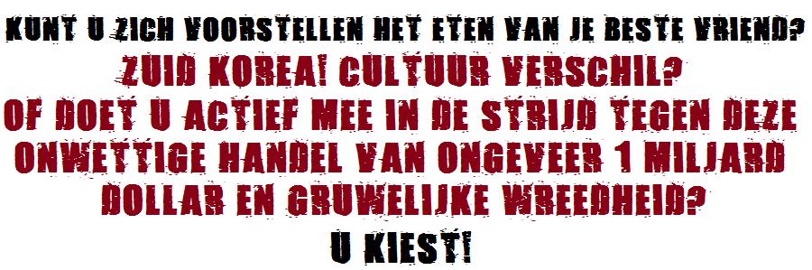 Dutch Website Text