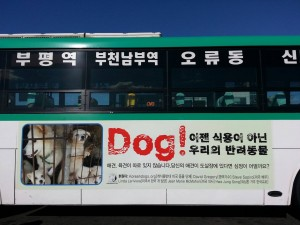 Nami Kim Bus Ad 2016_1