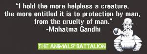 The Animals' Battalion