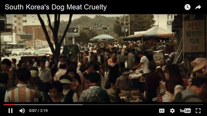 south-koreas-dog-meat-cruelty-trailer
