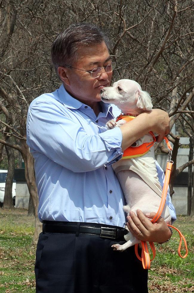 Moon Jae-In at dog park 041517
