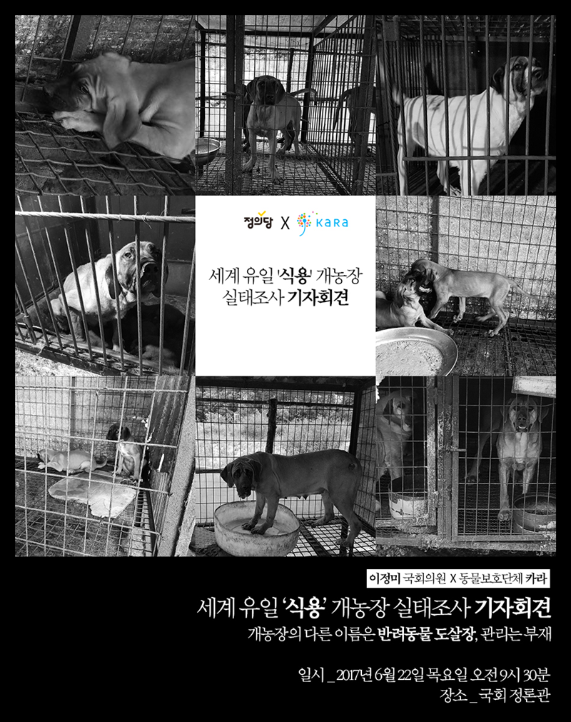 KARA Press Conf on dog farm survey